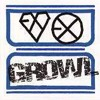 EXO - Growl (으르렁) Chinese Ver. [ Full Audio ]