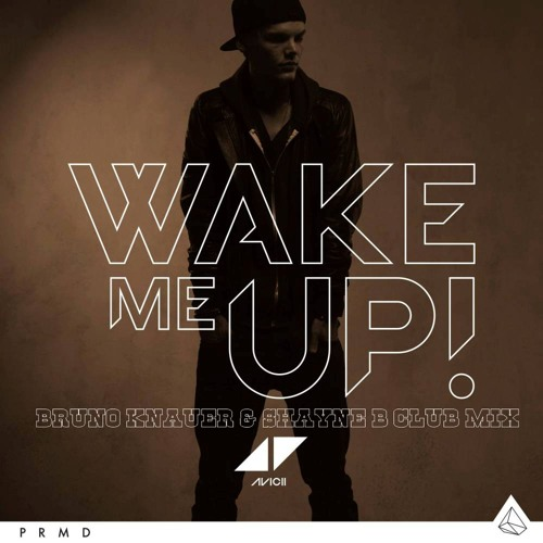 Avicii - Wake Me Up (Bruno Knauer & Shayne B Club Mix)