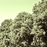 Alice Boman - Waiting (PAL Remix)
