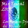 Mix Tribal PVT 2013 ))Dj Flores (( - Expecial del Colectivo Tribal M exico