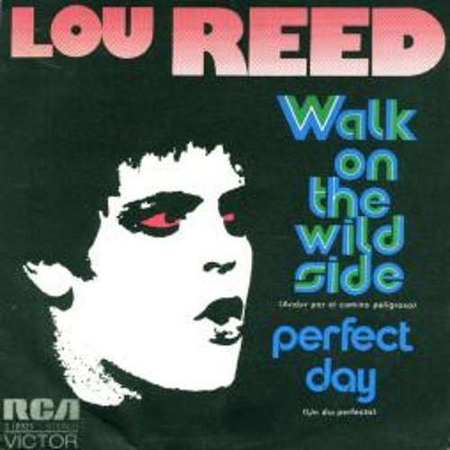 Lou Reed - Walk on the wild side (fdel edit) !!FREE DOWNLOAD!!!