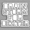 BSFD - Berdiri Di Atas Perbedaan (Sample Song)