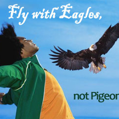 Pigeons Or Eagles