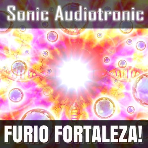 2.8 - Sonic Audiotronic
