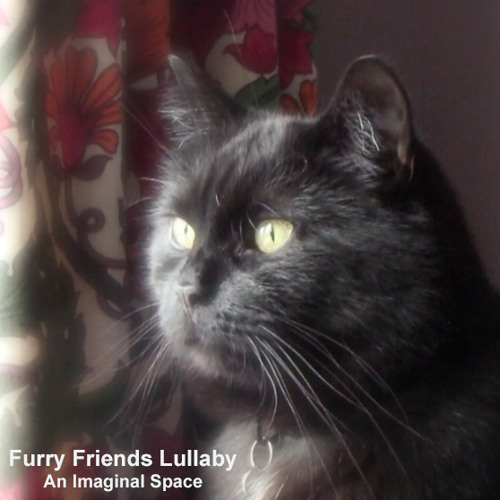 Furry Friends Lullaby