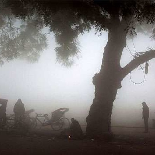 Rickshaw In The Fog