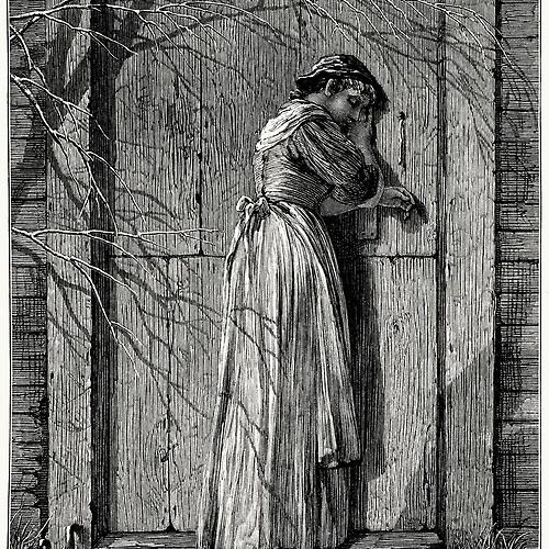 Eleanor Rigby (cover) (rough cut)