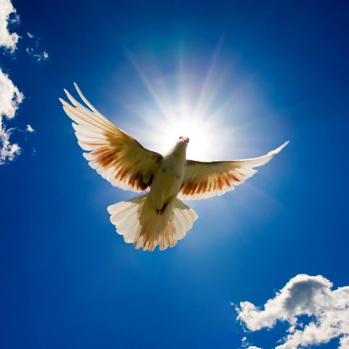 """You Gave Me Wings""    a Ron Walton/Chris Harris song: Tabitha Music Ltd."