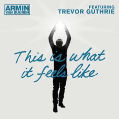 Armin van Buuren - This Is What It Feels Like (Live @ Palladium, Los Angeles 03-05-2013)