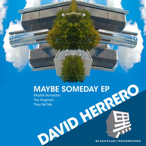 BFR013 - David Herrero - The Frogman