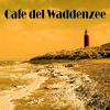 Disco Dymka - Cafe del Waddenzee Live-mix 08-08-2013
