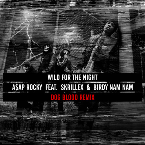A$AP ROCKY- WILD FOR THE NIGHT (DOG BLOOD REMIX)