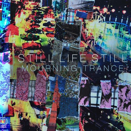 Still Life Still - Deer Hologram