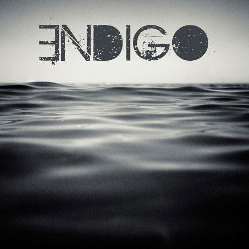 ENDIGO - Benthic Zone