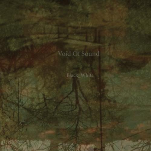 Void Of Sound - Black_White Excerpt