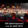 DIA [Plattenpussys] Live @ JAAS Festival 2013 (Jagdauf Am See)