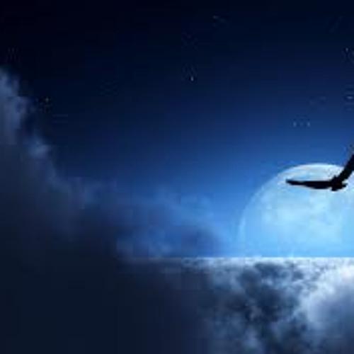 Flying High (Riny Raijmakers )