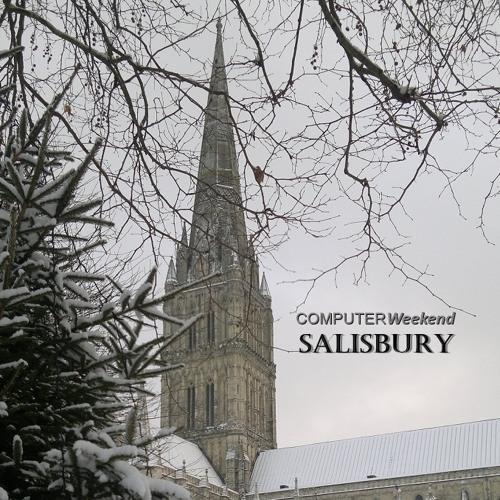 Salisbury from the Avon