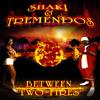 13 Woman like me (Shaki Feat. James Kirt)