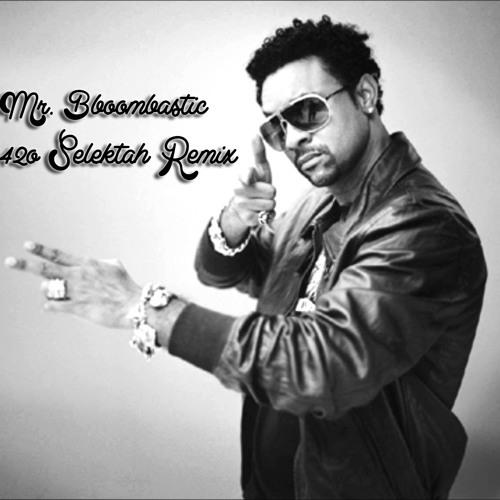 Shaggy - Mr. Boombastic (420 Selektah Refix)