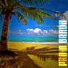 Praia Brava - Skir Live (original-mix)