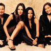 What Can I Do to Make You Love Me the corrs