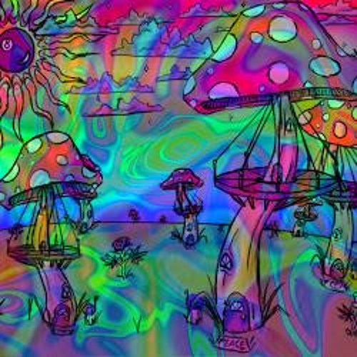 The Fungimental Radio Show 9th August 2013 - Feat Lasrhors