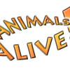 Animals are alive(Martin Garixx - Animals VS Krewella-Alive) Dj D&A Bootleg