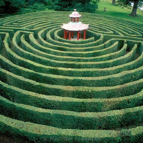 Oráculo 13 20 - The Maze Of Oráculo - ***coming soon***