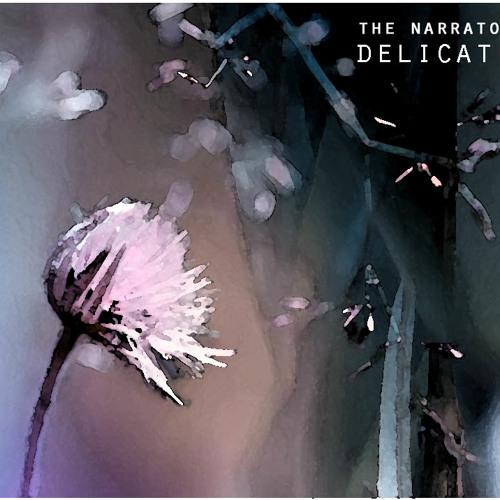 The Narrator - Delicate