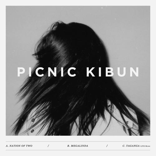 Picnic Kibun - Megalinda EP [ENDMK 09]