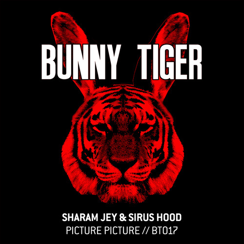 Sharam Jey & Sirus Hood - Picture Picture (Preview!)BT017 / Out Aug 27th!