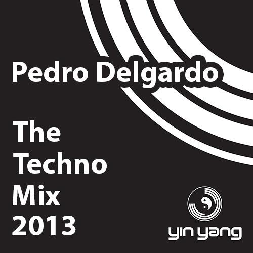 The Techno Mix 2013