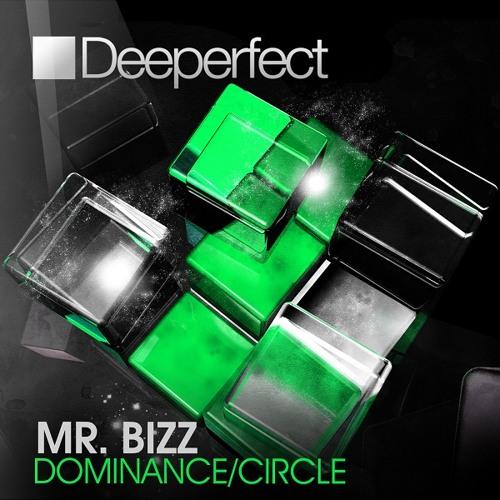 Mr. Bizz - Circle (Pig & Dan Remix)