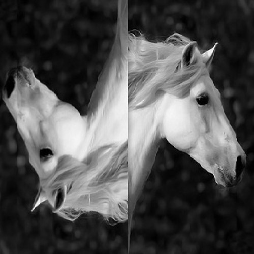 Dj Diass - White Horse (Original Mix) [Underground Mjuzieek Digital]