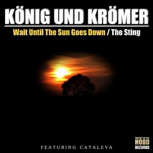 König & Krömer Ft. Cataleya - The Sting (Original Mix)