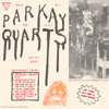 Parquet Courts - You've Got Me Wonderin' Now mp3