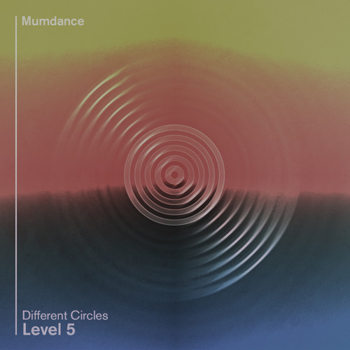 Different Circles -  Level Five