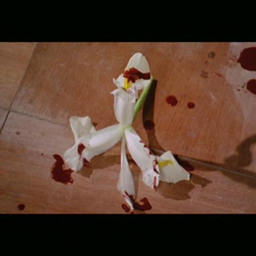Tredici Bacci: The Thirteen Kisses EP