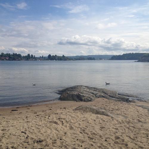 Fjord in Norway [WANDA GROUP EXTENDED EDIT]