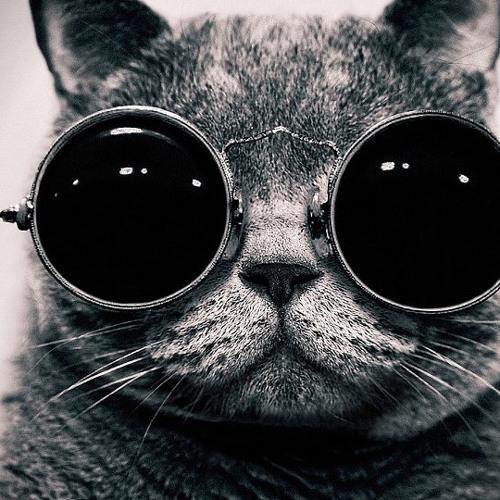 7TITANZ - Cats