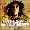 Buffalo Soldier (Euphonik & Chris Sen Remix)