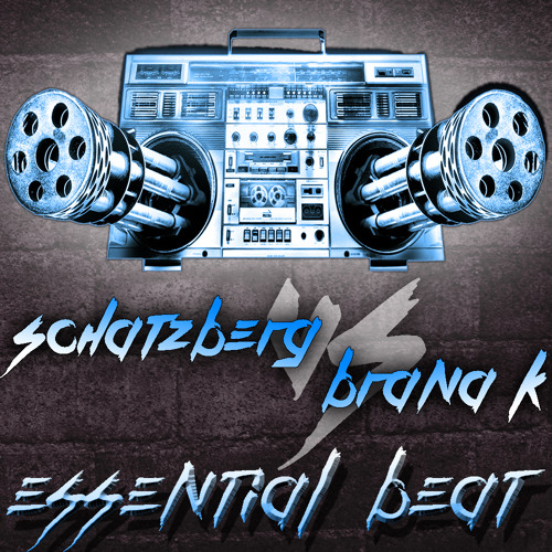 Schatzberg vs Brana K - Essential Beat (Mix 2013)