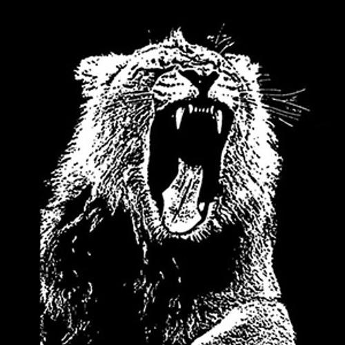 Martin Garrix -Animals (Skongk Remix)