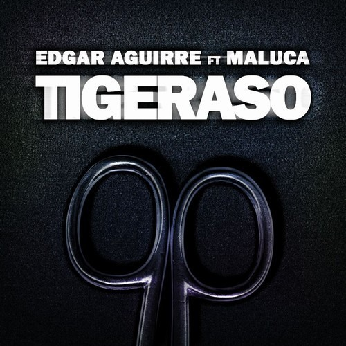 Edgar Aguirre ft. Maluca - Tigeraso (Private version 2013):::FREE DOWNLOAD:::