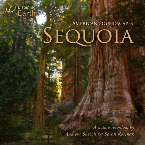 Sequoia, An American Soundscape - Album Sample
