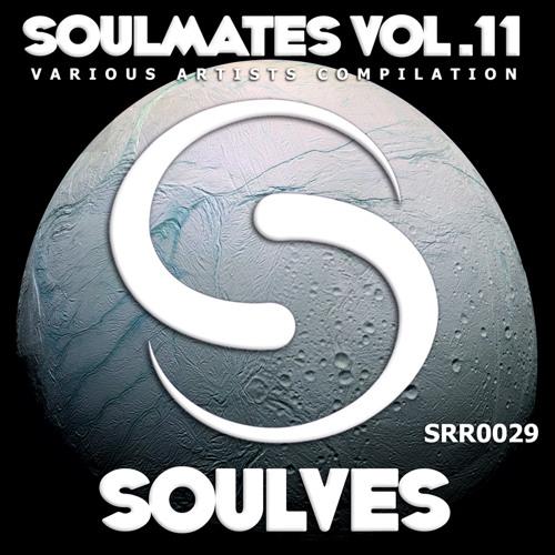 Vsign - Fallentrue (original Mix) SOULVES RECORDS