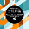 Tiësto & Nari & Milani vs Delayers - Move To The Rhythm