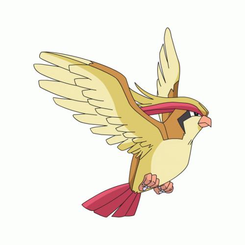 ScoreVG 018 - Pidgeot