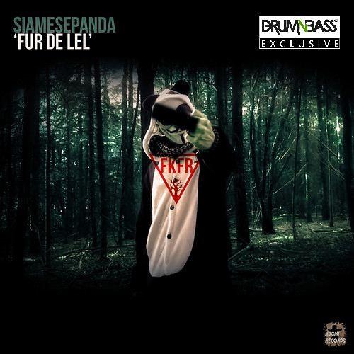 Fur De Lel by Siamese Panda - DrumNBass.NET Exclusive
